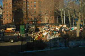 trash pile in new york city container